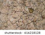 leaf on the broken ground   Shutterstock . vector #616218128