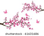 vector cherry blossom branches... | Shutterstock .eps vector #61631686