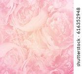 Stock photo unfocused blur rose petals flower background pastel and soft vintage card 616352948