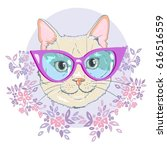 cat with glasses   vector ... | Shutterstock .eps vector #616516559