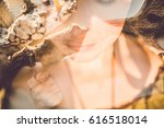 portrait portrait of girl with... | Shutterstock . vector #616518014