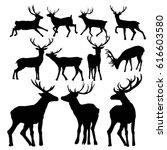 deer silhouette  vector  ... | Shutterstock .eps vector #616603580