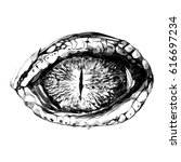 eye of a crocodile or reptile... | Shutterstock .eps vector #616697234