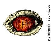 Eye Of A Crocodile Or Reptile...