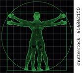 wireframe vitruvian man. vector ... | Shutterstock .eps vector #616862150