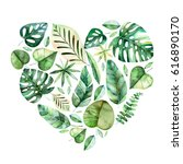 handpainted illustration with...   Shutterstock . vector #616890170