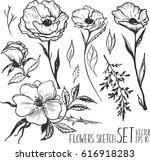 vector set of sketch flowers... | Shutterstock .eps vector #616918283