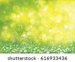 vector summer nature ... | Shutterstock .eps vector #616933436