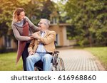 elderly man in wheelchair with... | Shutterstock . vector #616968860