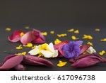 mixed flowers fallen on a plain ...   Shutterstock . vector #617096738