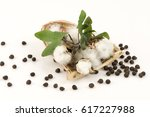 ceylon cotton  chinese cotton ... | Shutterstock . vector #617227988