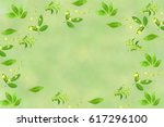 stevia and other plant... | Shutterstock . vector #617296100