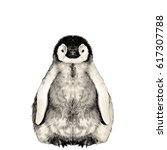 baby penguin small and cute is... | Shutterstock .eps vector #617307788