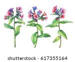 set of  first spring wild... | Shutterstock . vector #617355164