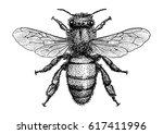 bee illustration  drawing ...   Shutterstock .eps vector #617411996