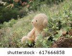 teddy bear with grass