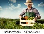 farmer carrying box of picked... | Shutterstock . vector #617668640