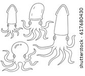vector set of squids | Shutterstock .eps vector #617680430