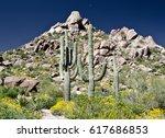 row of saguaro under pinnacle... | Shutterstock . vector #617686853