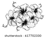 hibiscus flowers in a vintage... | Shutterstock .eps vector #617702330