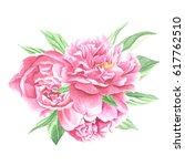 watercolor peonies centerpiece... | Shutterstock . vector #617762510