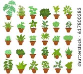 a collection of indoor plants.... | Shutterstock .eps vector #617800283
