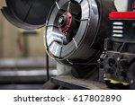 the feeding mechanism of... | Shutterstock . vector #617802890