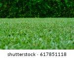 green grass of the golf course  ...   Shutterstock . vector #617851118