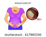 vector illustration of rh...   Shutterstock .eps vector #617885240