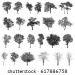 black tree silhouettes isolated ... | Shutterstock . vector #617886758