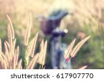 vintage bicycle with summer... | Shutterstock . vector #617907770