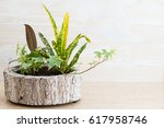 flowers in a pot on a wooden... | Shutterstock . vector #617958746