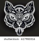 hand drawn beautiful artwork of ... | Shutterstock .eps vector #617983316