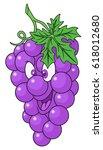fresh grapes cartoon | Shutterstock .eps vector #618012680
