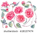Watercolor Floral Set Of...