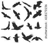 Set Of Silhouettes Of Flying...