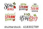 hand sketched lettering... | Shutterstock .eps vector #618302789