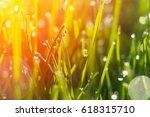 dew drops on bright green grass ... | Shutterstock . vector #618315710
