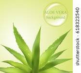 aloe vera background with water ... | Shutterstock .eps vector #618323540