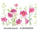 Hollyhock Drawing. Flowers...