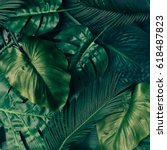 creative tropical green leaves... | Shutterstock . vector #618487823