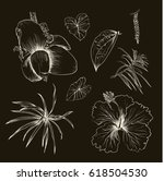 hand drawn branches and leaves...   Shutterstock .eps vector #618504530