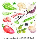 watercolor illustration set of... | Shutterstock . vector #618552464