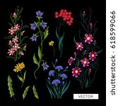 embroidery flowers. embroidered ... | Shutterstock .eps vector #618599066