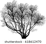 Illustration With Bare Tree...