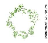 vector herbal green wreath with ... | Shutterstock .eps vector #618705698