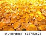 autumn. nature fall background... | Shutterstock . vector #618753626
