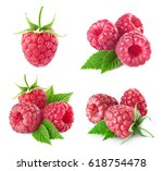 raspberry collection isolated...   Shutterstock . vector #618754478