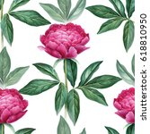 watercolor peony flowers... | Shutterstock . vector #618810950
