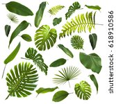tropical leaves background | Shutterstock . vector #618910586